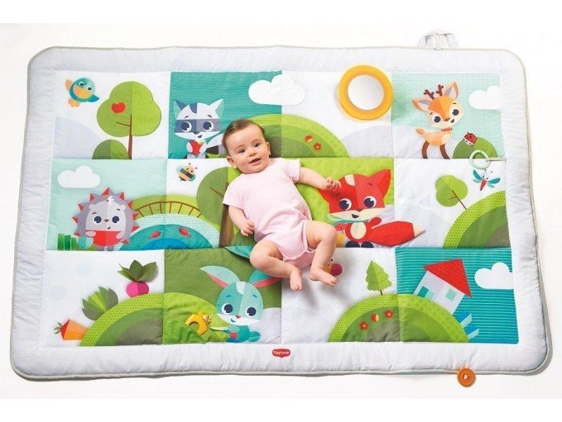 Hrac� deka hra na louce