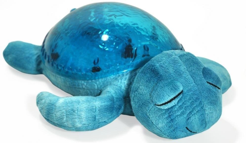No�n� lampi�ka korytna�ka modr� - zv��i� obr�zok