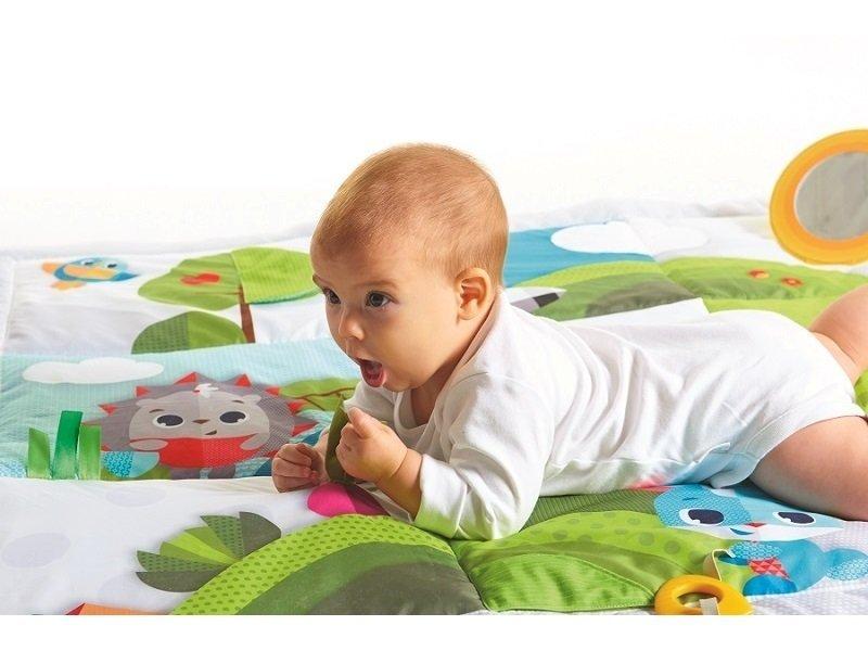 Hrac� deka hra na louce - zv��i� obr�zok